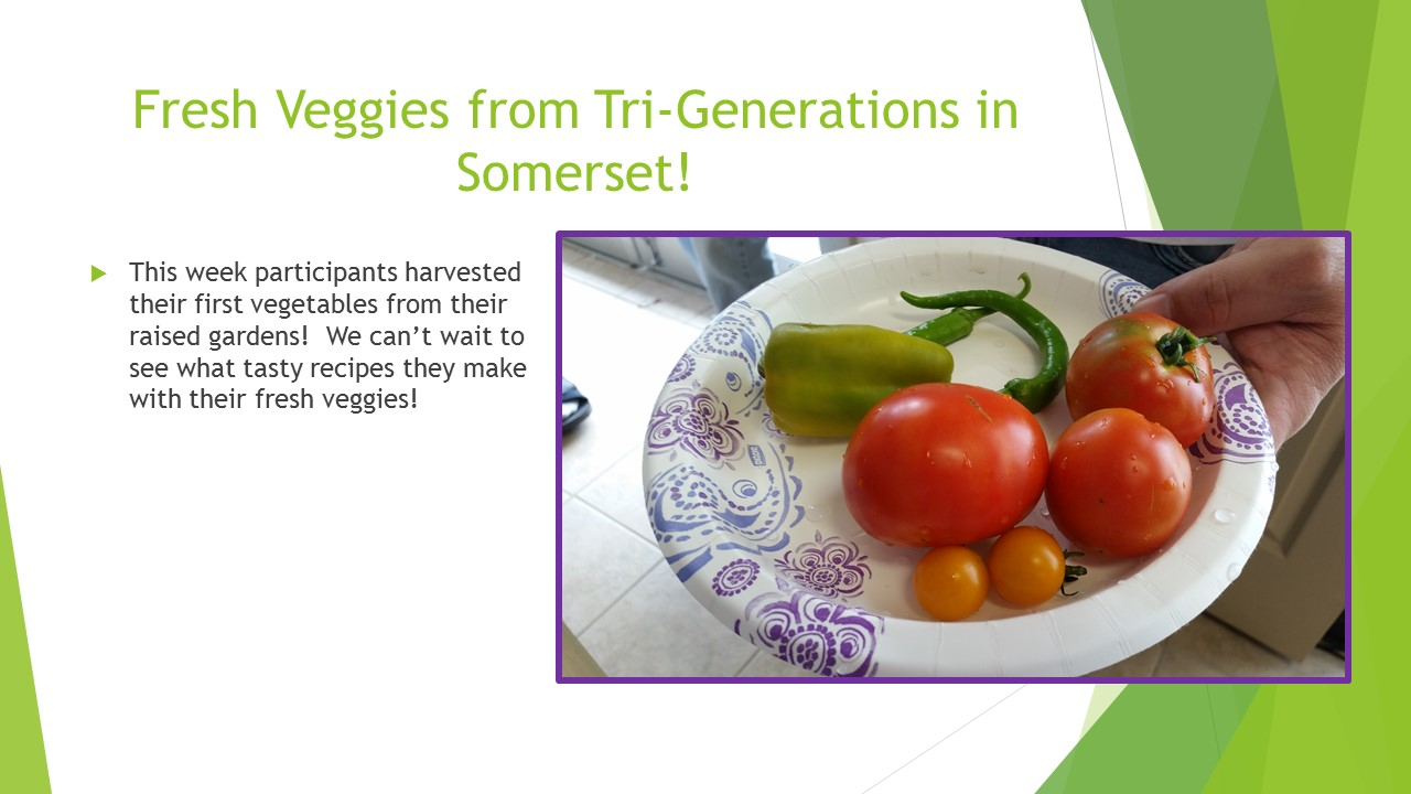 Fresh Veggies from Tri-Generations in Somerset!