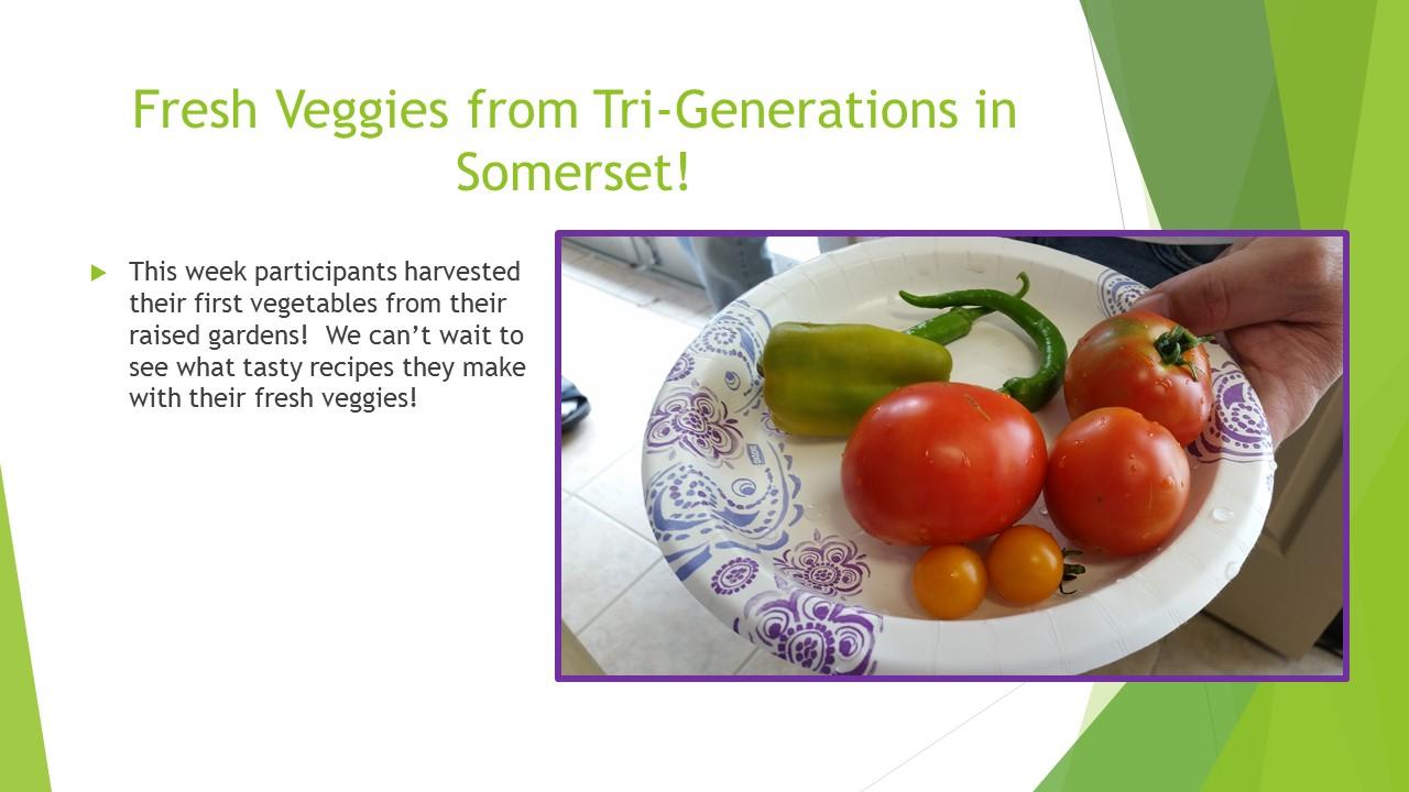 Fresh Veggies from Tri-Generations in Somerset!