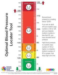 Optimal Blood Pressure Locator Tool