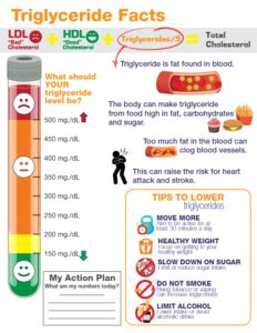 Triglyceride Facts